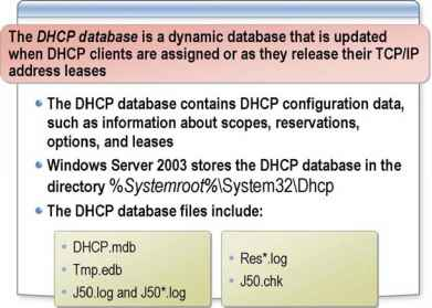 Dhcp Database Agent
