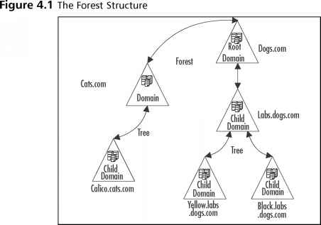Windows Server Forest Tree